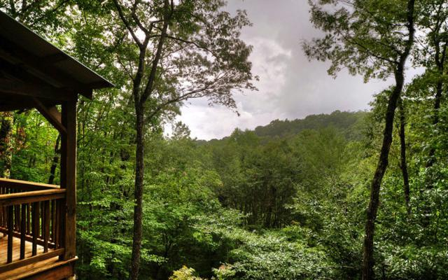 330 Smith Hill Rd, Cherry Log, GA 30522 (MLS #270824) :: RE/MAX Town & Country