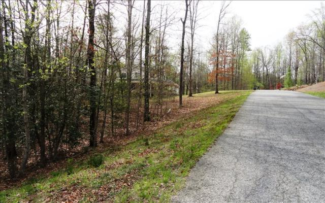 LOT 3 Arrowood Pointe, Blairsville, GA 30512 (MLS #271353) :: RE/MAX Town & Country