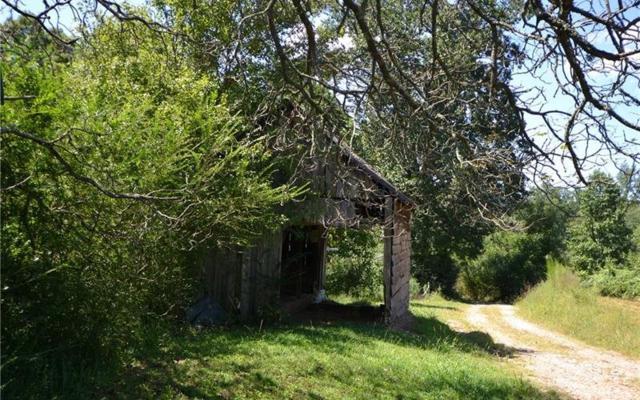 385 Dean Trail, Talking Rock, GA 30175 (MLS #271499) :: RE/MAX Town & Country