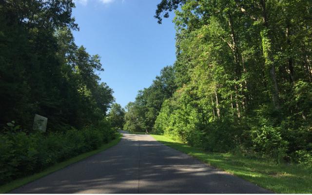00 Timber Oaks Ridge, Turtletown, TN 37391 (MLS #271634) :: RE/MAX Town & Country