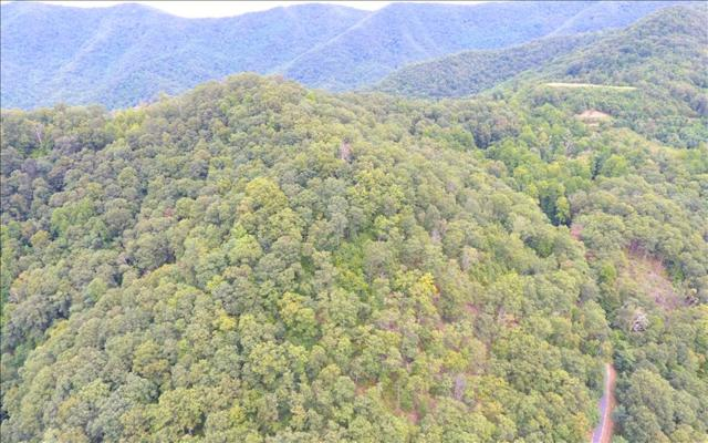 Red Bird Ln_Lorie Mt, Hayesville, NC 28904 (MLS #271769) :: RE/MAX Town & Country