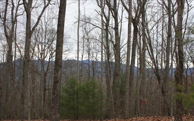 LOT S Moon Shadow View N, Blairsville, GA 30512 (MLS #271819) :: RE/MAX Town & Country