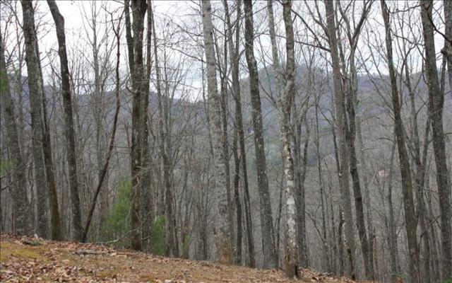 LOT T Moon Shadow View N, Blairsville, GA 30512 (MLS #271820) :: RE/MAX Town & Country