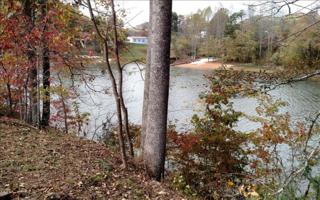 5 Harbour Cove Drive, Hayesville, NC 28904 (MLS #271903) :: RE/MAX Town & Country