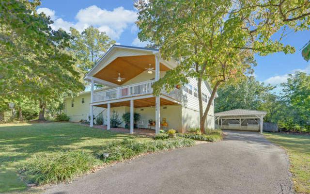 776 Hiawassee Estates Dr, Hiawassee, GA 30546 (MLS #272305) :: RE/MAX Town & Country