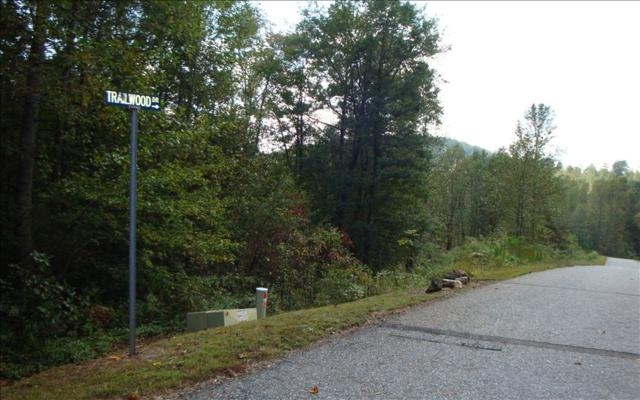 LOT26 Trailwood Drive, Blairsville, GA 30512 (MLS #272482) :: RE/MAX Town & Country