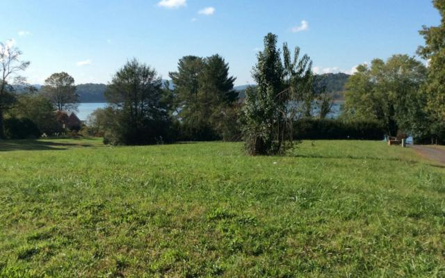 Hwy 75N/Meadow View, Hiawassee, GA 30546 (MLS #272644) :: RE/MAX Town & Country
