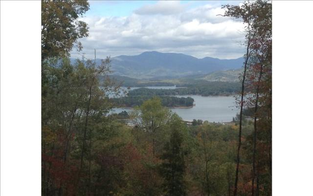 #38 Mining Gap Trail, Young Harris, GA 30582 (MLS #272685) :: RE/MAX Town & Country