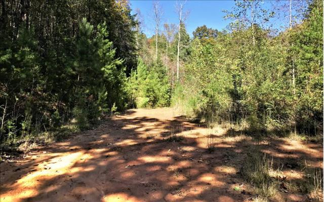 LT55 Big Timber Road, Mineral Bluff, GA 30559 (MLS #273125) :: RE/MAX Town & Country