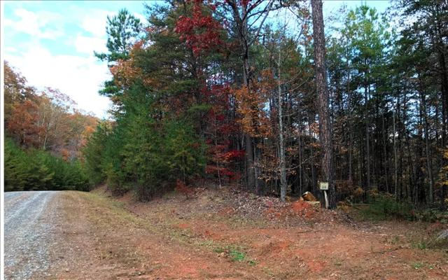 LT59 Big Timber Road, Mineral Bluff, GA 30559 (MLS #273130) :: RE/MAX Town & Country