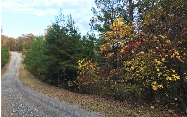 LT60 Big Timber Road, Mineral Bluff, GA 30559 (MLS #273131) :: RE/MAX Town & Country