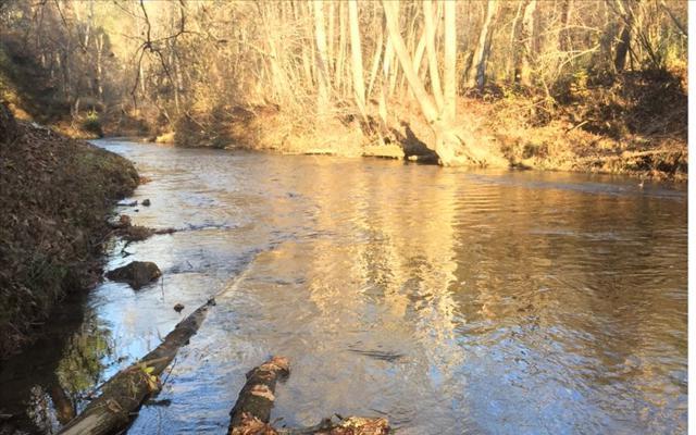 LT 27 Woodland Trail, Epworth, GA 30541 (MLS #273346) :: RE/MAX Town & Country