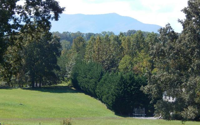 #7 Sneaking Creek, Hayesville, NC 28904 (MLS #273460) :: RE/MAX Town & Country