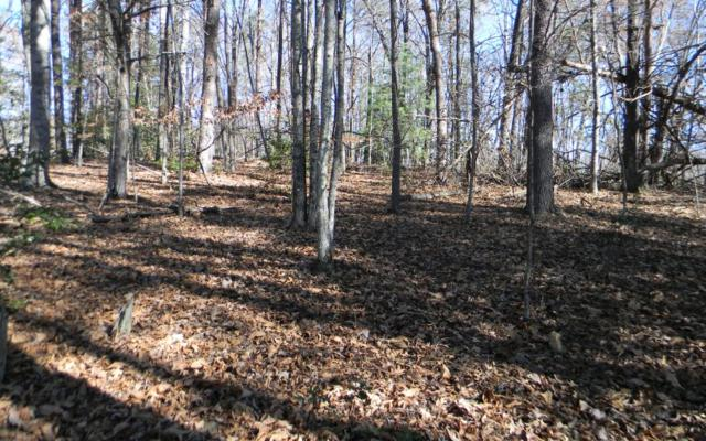 Ashe Knob Rd, Hayesville, NC 28904 (MLS #273605) :: RE/MAX Town & Country