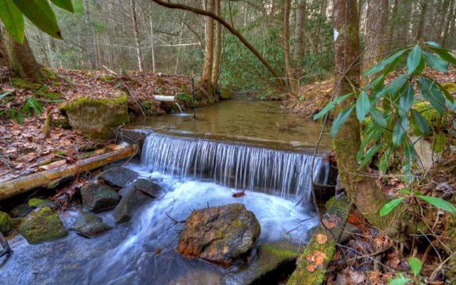 L13 Buck Creek Crossing, Blue Ridge, GA 30513 (MLS #273613) :: RE/MAX Town & Country