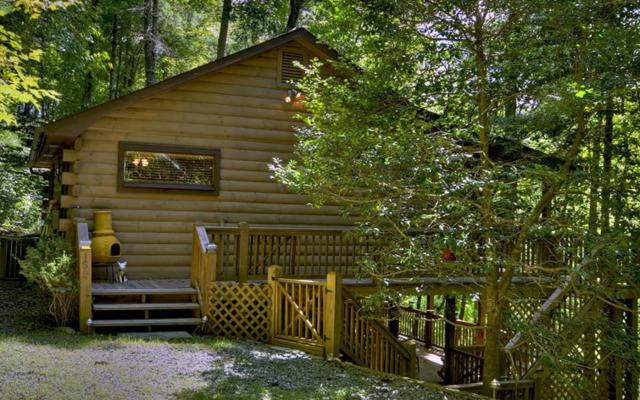 159 Little Beaver Drive, Cherry Log, GA 30522 (MLS #273735) :: RE/MAX Town & Country