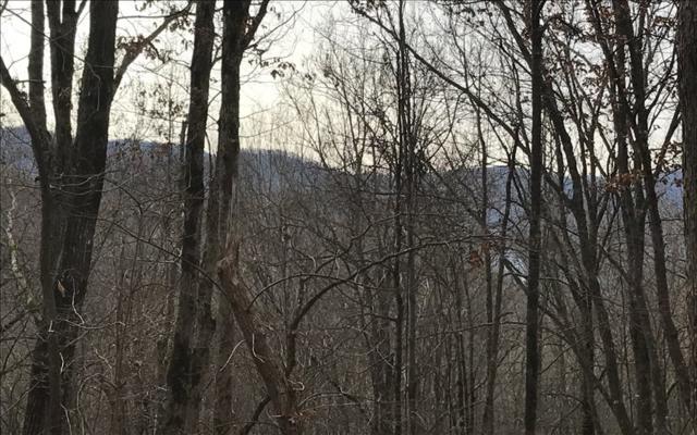 LT 20 Shooting Creek Trail, Hayesville, NC 28904 (MLS #273857) :: Path & Post Real Estate