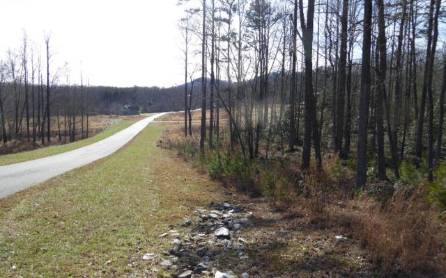 LT 46 Sharptop Settlement, Blairsville, GA 30546 (MLS #274054) :: RE/MAX Town & Country