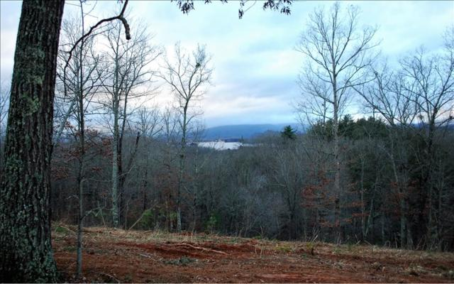 LT10 Majestic Dr, Hayesville, NC 28904 (MLS #274466) :: Path & Post Real Estate