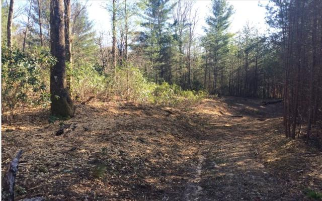 LOT 6 White Pine Ridge, Hayesville, NC 28904 (MLS #275265) :: RE/MAX Town & Country