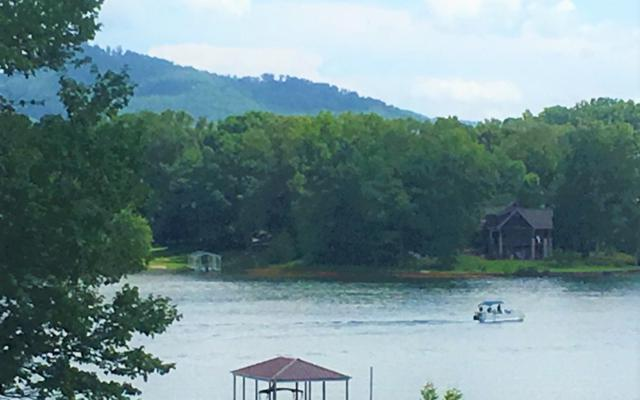 Mcintosh Cove, Hayesville, NC 28904 (MLS #275312) :: RE/MAX Town & Country