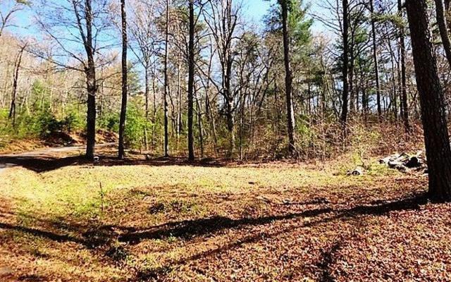 LT 5 Jarrett Oaks Drive, Hayesville, NC 28904 (MLS #275639) :: Path & Post Real Estate