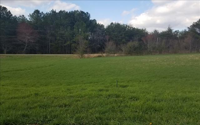 LOT 2 Barons Ridge Subd, Blairsville, GA 30512 (MLS #275755) :: RE/MAX Town & Country