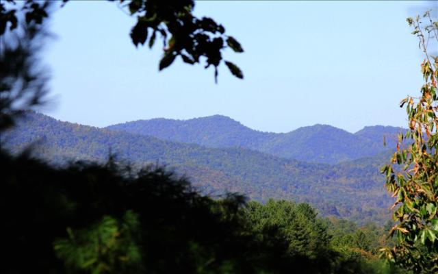 LT29 Fortenberry Creek, Blairsville, GA 30512 (MLS #275809) :: RE/MAX Town & Country
