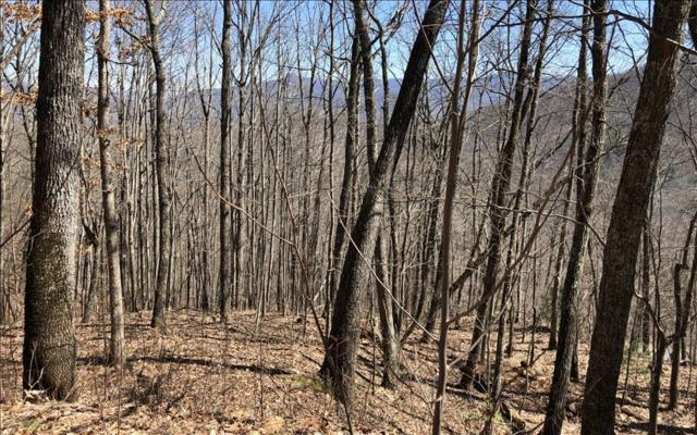 LOT31 Overlook At Yh, Young Harris, GA 30582 (MLS #275890) :: RE/MAX Town & Country