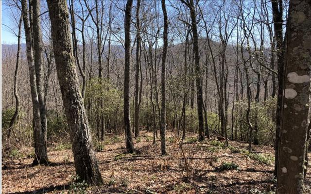 LOT39 Overlook At Yh, Young Harris, GA 30582 (MLS #275892) :: RE/MAX Town & Country
