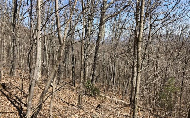 LOT44 Overlook At Yh, Young Harris, GA 30582 (MLS #275894) :: RE/MAX Town & Country