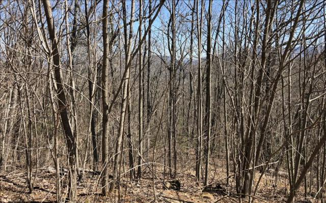 LOT45 Overlook At Yh, Young Harris, GA 30582 (MLS #275896) :: RE/MAX Town & Country