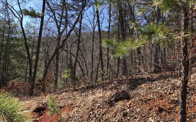 LOT49 Overlook At Yh, Young Harris, GA 30582 (MLS #275900) :: Path & Post Real Estate
