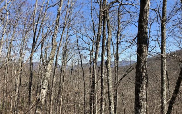 LOT51 Overlook At Yh, Young Harris, GA 30582 (MLS #275901) :: RE/MAX Town & Country