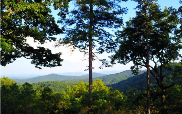 Frog Mountain View, Blue Ridge, GA 30513 (MLS #275975) :: RE/MAX Town & Country