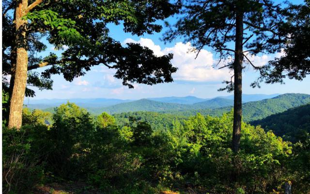 Frog Mountain View, Blue Ridge, GA 30513 (MLS #275976) :: RE/MAX Town & Country