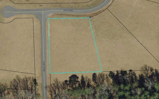 LT 25 Fox Lake Subdivision, Blairsville, GA 30512 (MLS #276512) :: RE/MAX Town & Country