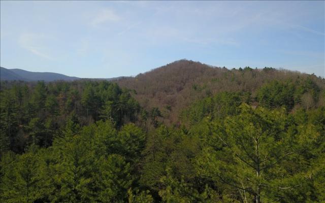 LOT28 Laurel Creek, Blue Ridge, GA 30513 (MLS #276680) :: RE/MAX Town & Country