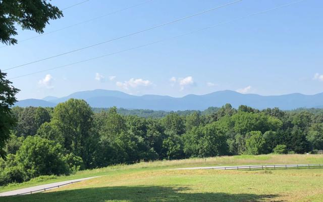 Lot 27 The Arbor, Blairsville, GA 30512 (MLS #276911) :: RE/MAX Town & Country