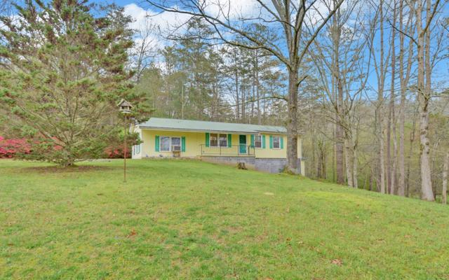 130 Edgewood Lane, Blue Ridge, GA 30513 (MLS #277239) :: RE/MAX Town & Country
