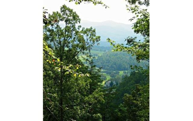 LT29C Mountain Harbour, Hayesville, NC 28904 (MLS #277966) :: Path & Post Real Estate
