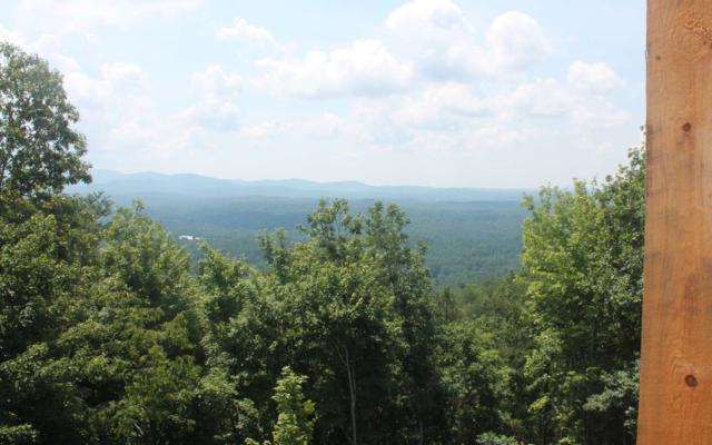 1695 Talona Mountain Road, Ellijay, GA 30540 (MLS #278019) :: RE/MAX Town & Country