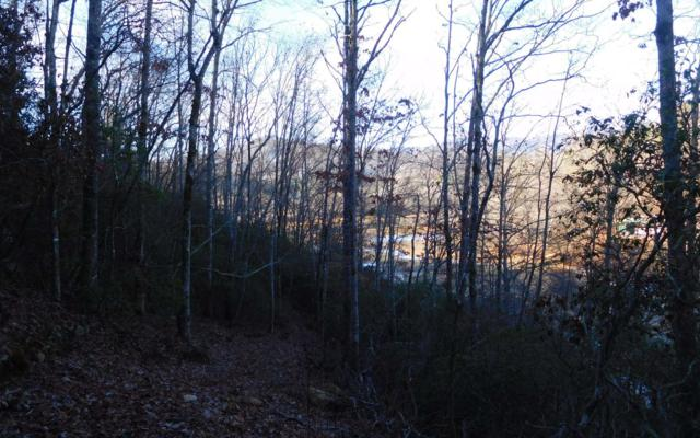 LOT 5 Bearmeat Creek Vlg, Hiawassee, GA 30546 (MLS #278122) :: RE/MAX Town & Country