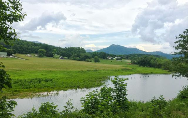 17 Meadows At Chatuge, Hayesville, NC 28904 (MLS #278153) :: RE/MAX Town & Country