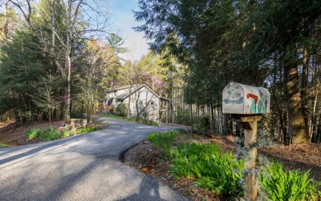 102 River Rd, Cherry Log, GA 30522 (MLS #278194) :: RE/MAX Town & Country