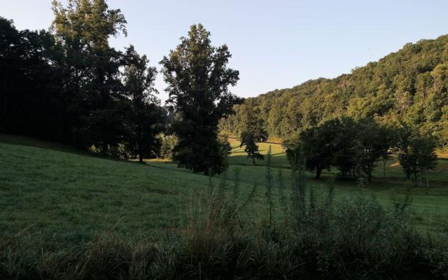 LT 10 Oak Ridge North, Hayesville, NC 28904 (MLS #278379) :: RE/MAX Town & Country