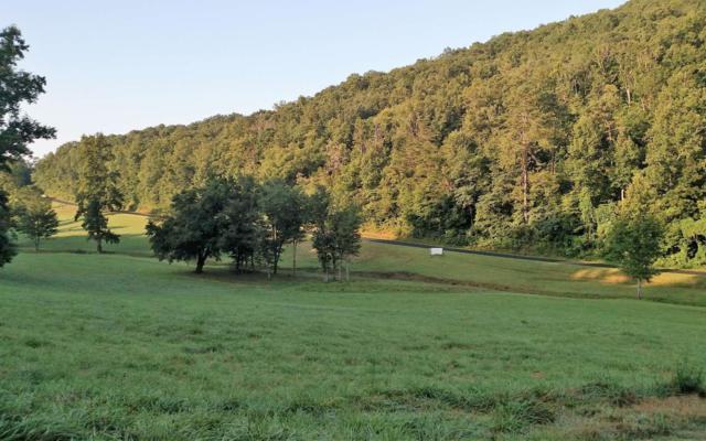 LT 11 Oak Ridge North, Hayesville, NC 28904 (MLS #278380) :: Path & Post Real Estate