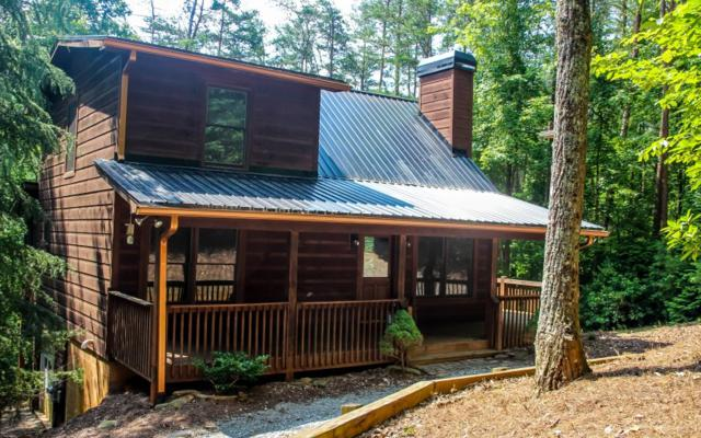 60 Clubhouse Ct., Ellijay, GA 30536 (MLS #278946) :: RE/MAX Town & Country