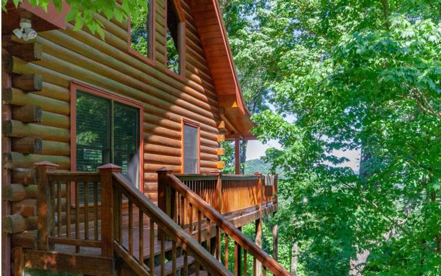 300 Mountain View Road, Ellijay, GA 30540 (MLS #279162) :: RE/MAX Town & Country