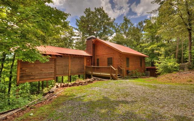22 N Candice Court, Cherry Log, GA 30522 (MLS #279329) :: RE/MAX Town & Country